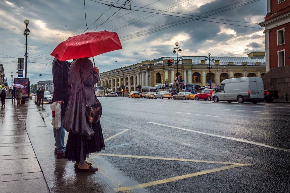 ФОТО: cdnimg.rg.ru