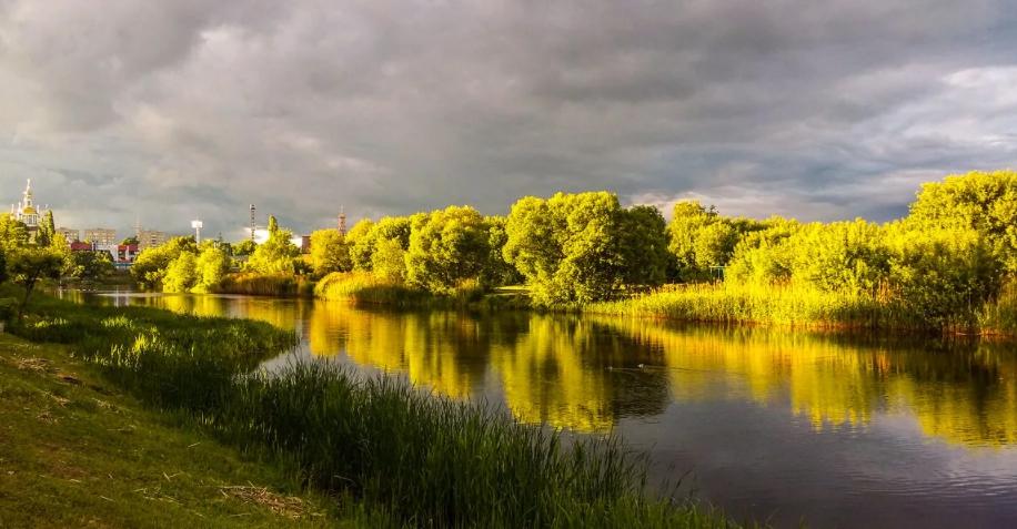 На реке Цне ФОТО: Александр Селезнев Источник:   s1.fotokto.ru