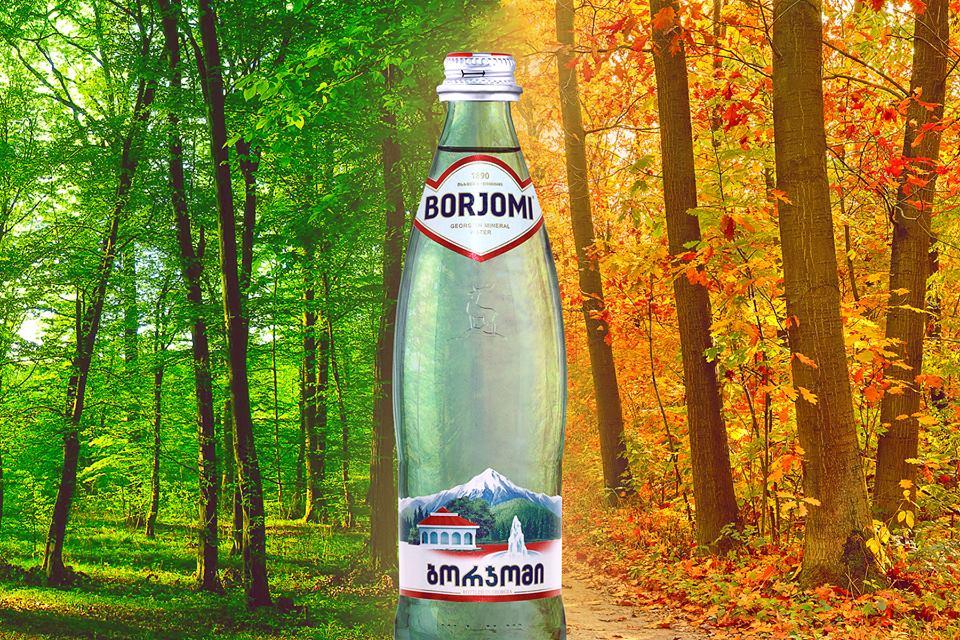 Боржоми - грузинская здравница для всех и каждого 12