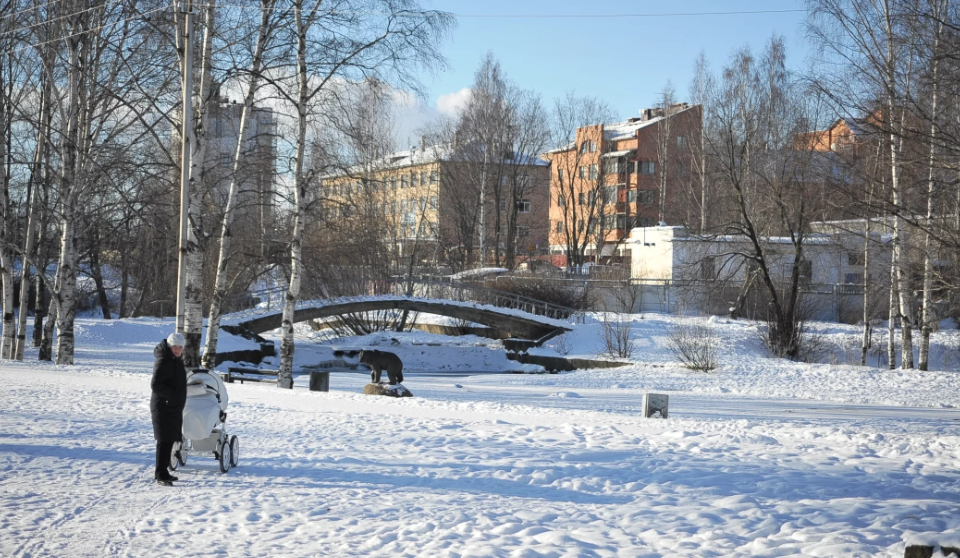 Парк 50-летия Пионерии Петрозаводск