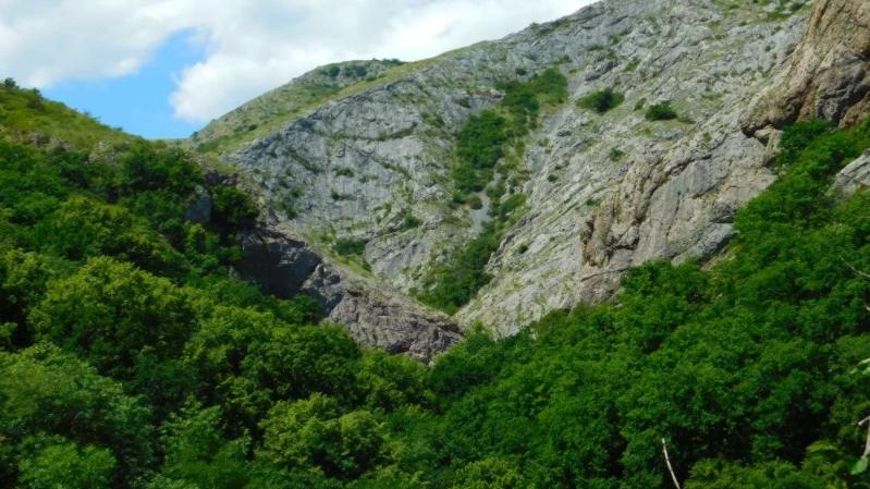 Орлиное ущелье Грузия