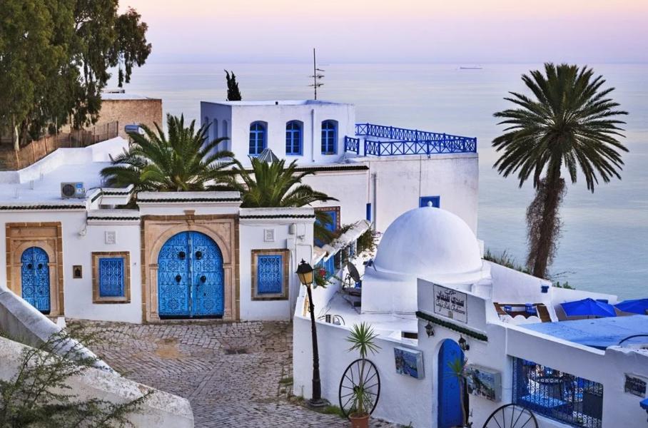 Тунис сиди бу Саид море