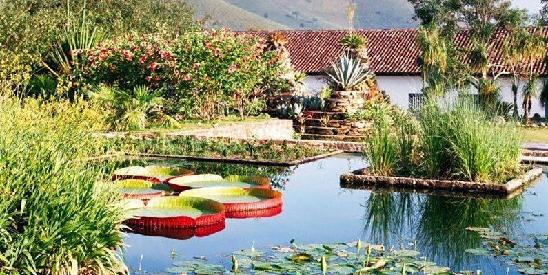 Сад Бурле Маркса – дом тропических растений 1